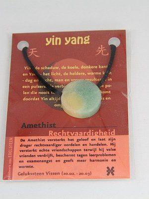 Yin Yang geluksteen hanger amethist