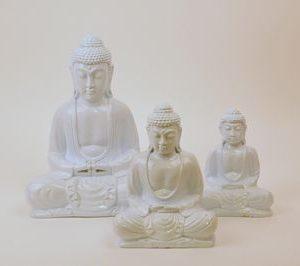 Buddha wit