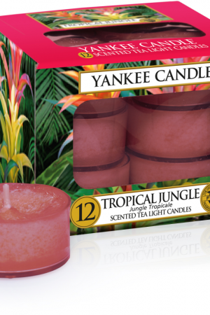 yankee candle-tropical jungle-12 tea lights-52171
