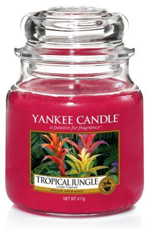 yankee candle-tropical jungle
